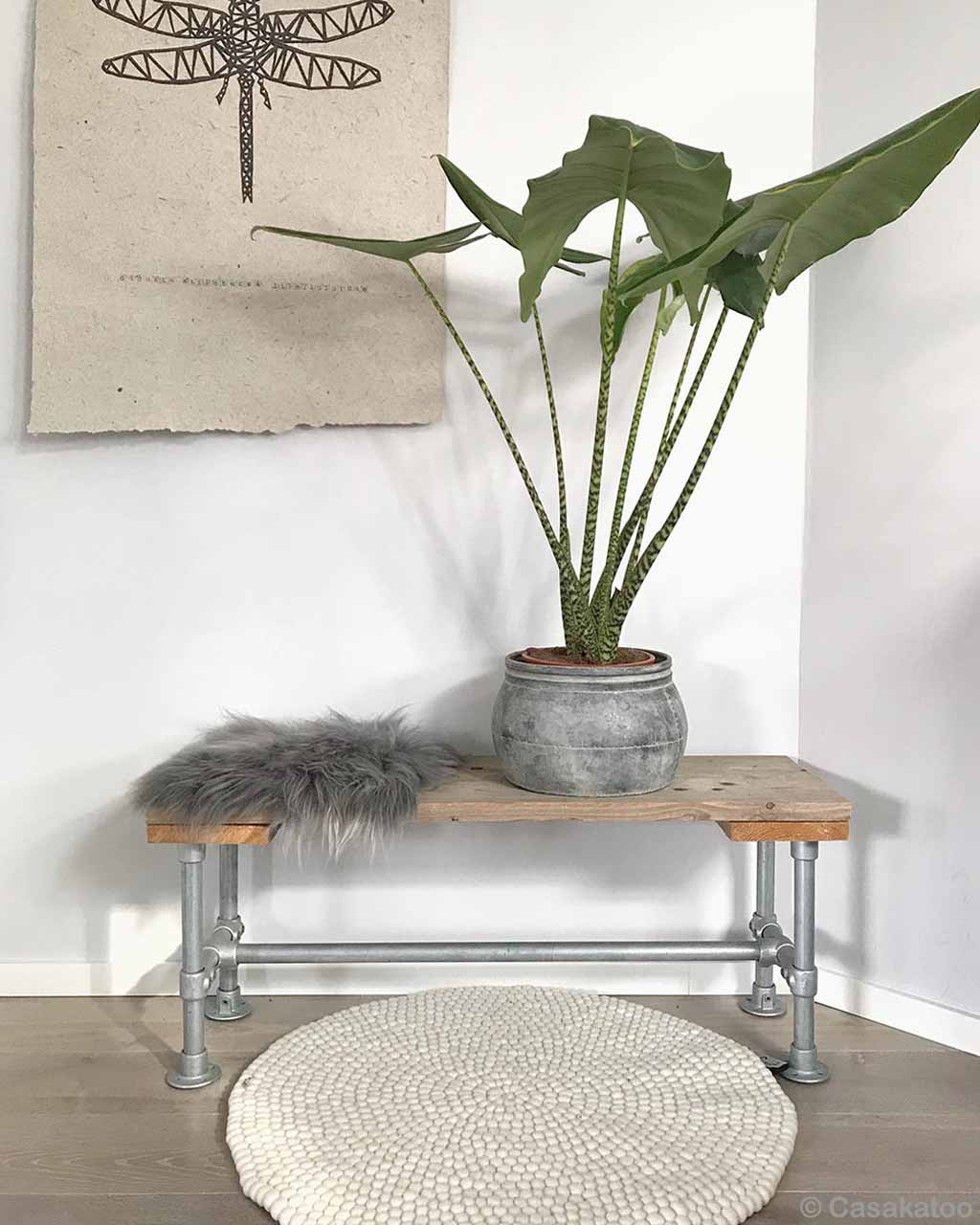 pot on table with big green leaves fresh room area rugs