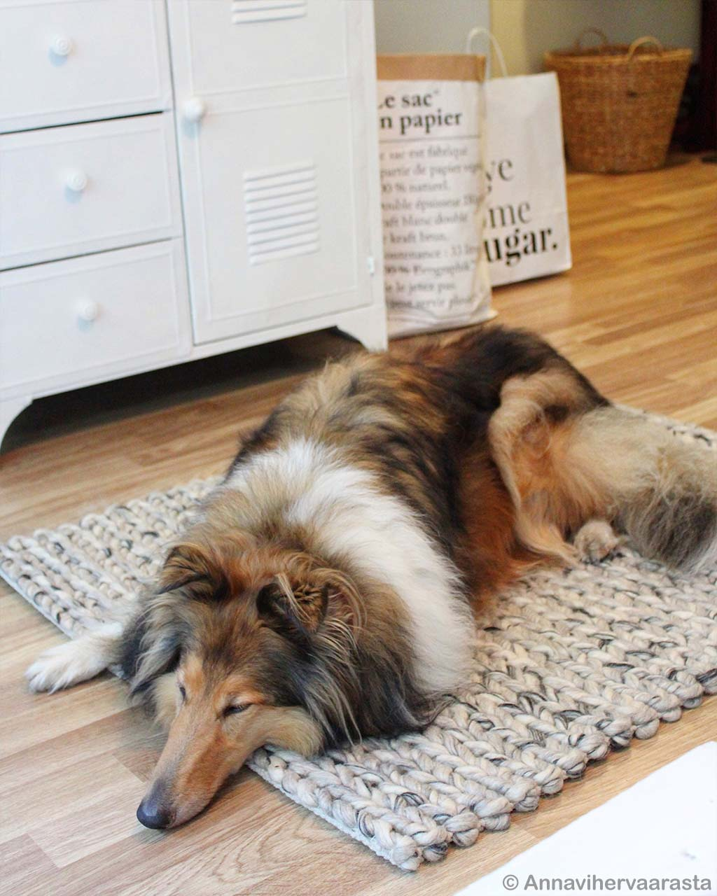sleeping brown dog made in india fresh childrens rugs