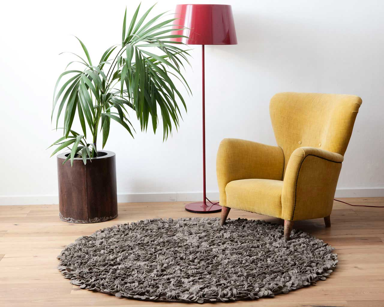 grey brown living room with carpet yellow chair plant lamp design room sukhi